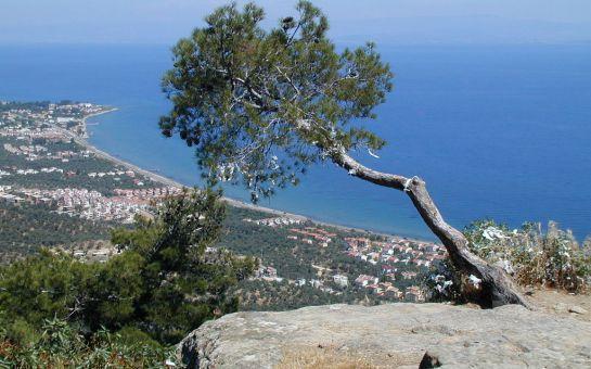 Tatil Bugün'den Kurban Bayramı'na Özel 3 Gece Yarım Pansiyon Konaklamalı 5 Günlük Bozcaada, Assos, Kazdağları, Ayvalık, Cunda Doğa ve Deniz Turu