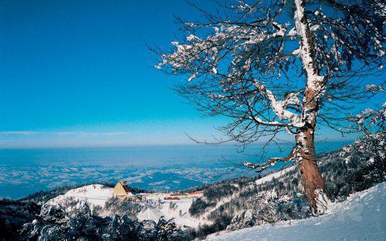 Kış Cenneti Kartepe'ye Gidiyoruz Tur Dünya'sından Günübirlik Öğlen Yemeği İkramıyla Kartepe Kayak Turu
