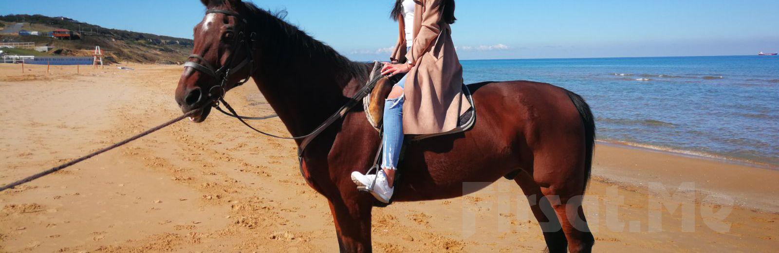 Atlı Tur'da Organik Kahvaltı Keyfi ve At İle Gezinti Seçenekleri