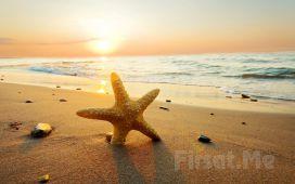 Kilyos Bamboo Beach'de, Tüm Gün Plaj Girişi, Şezlong, Şemsiye Fırsatı (Bayram Seçeneğiyle)