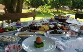 Urla Mordeniz Kahvaltı Evi'nde Doğa ile Başbaşa Serpme Kahvaltı Keyfi