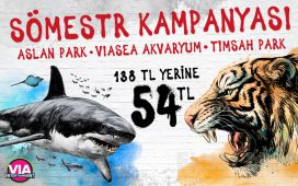 Viaport Marina Tuzla'da Aslan Park + Viasea Akvaryum + Timsahpark Bileti