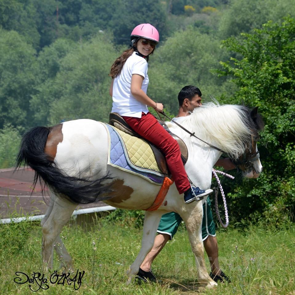 Atlı Tur