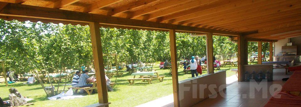 Park Asya Piknik