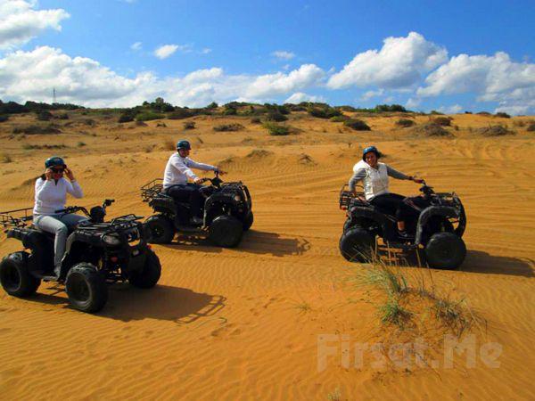Zebra ATV Safari